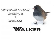 Bird Friendly Glazing Challenges & Solution