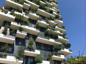 Living in a vertical forest in the middle of the city: window sashes up to 3000 mm high for a pleasant view of the greenery