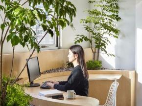 Office Design – Moving from Lean to Green