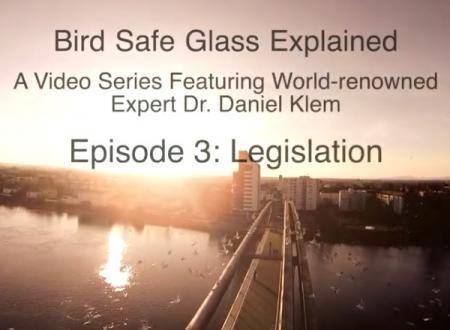 Bird Safe Glass Explained - Episode 3: The Legislation