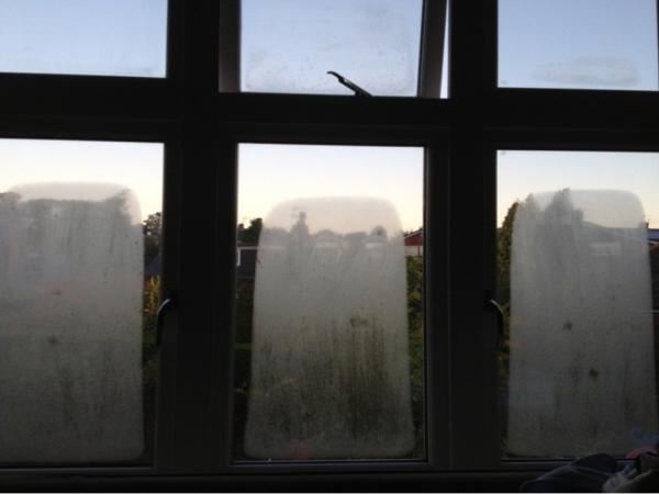 Troubleshooting guide external condensation and related effects on sealed units - Eco friendly large glass windows offering effective energy savings for contemporary residence ...