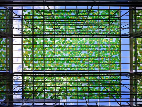 Using Decorative Glass to Create an Urban Forest