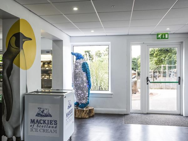 'Creature comforts': aluplast Ideal 70 specified by Edinburgh Zoo