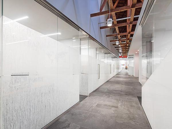 From Warehouse to Workspace: VividGlass Partition Walls Transform F+S Offices