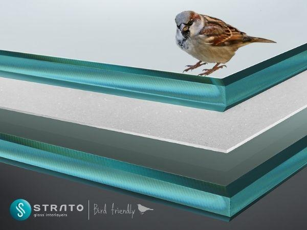 STRATO® Bird Friendly | The first anti-collision EVA film to protect birds